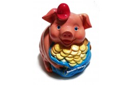 Копилка свинка №5